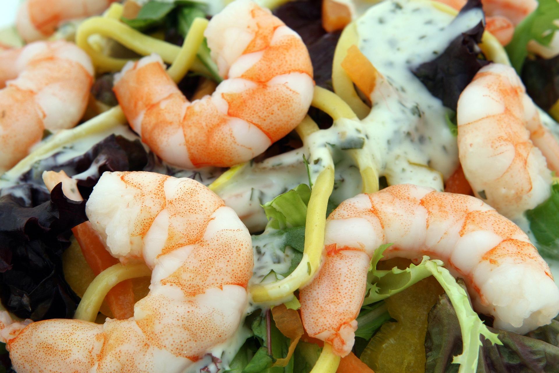 Broccoli and Shrimp Salad